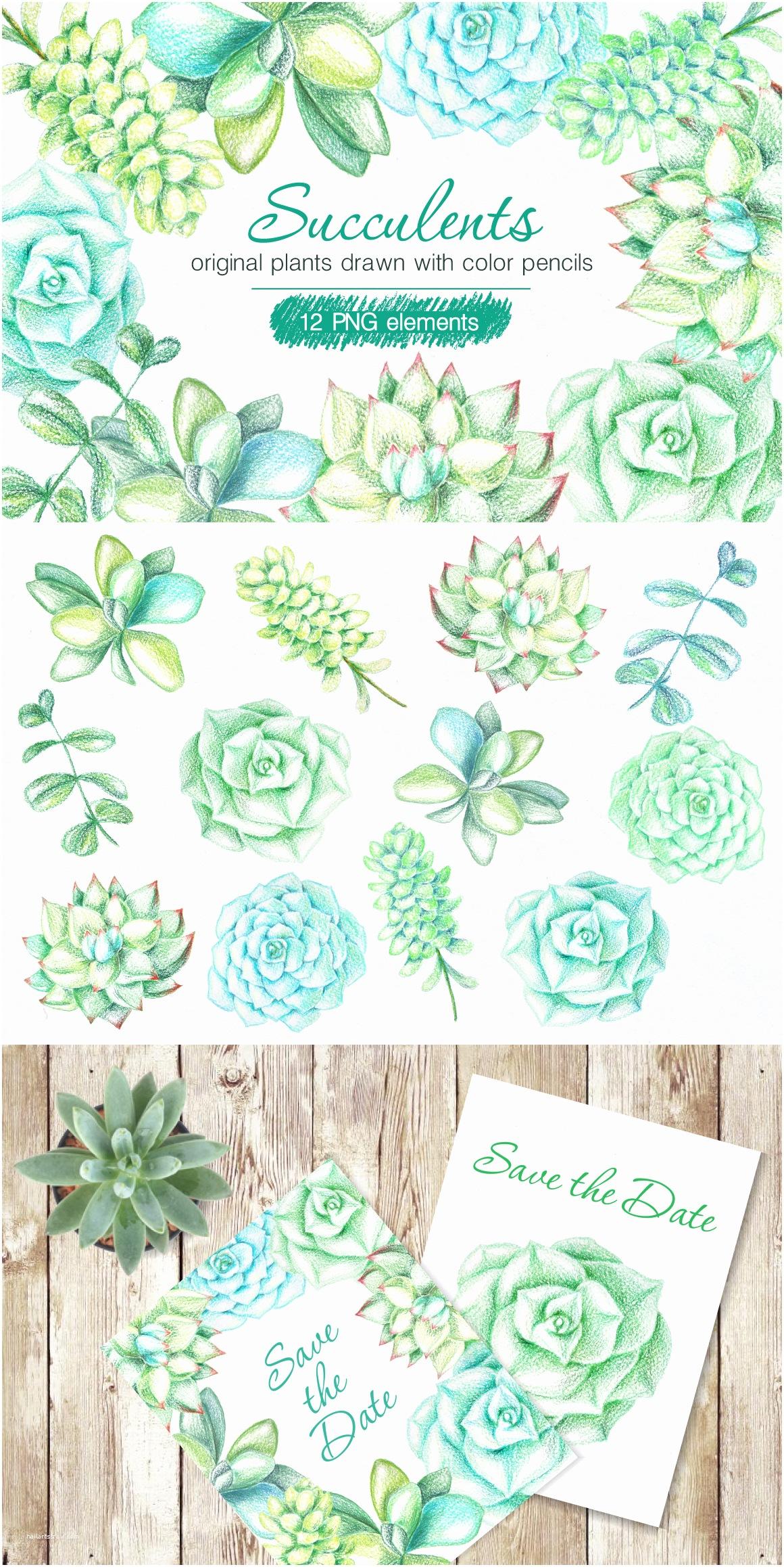 Cactus Wedding Invitations Cacti Cactus Watercolor Clip Art Aqua Green Clip Art