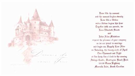 Castle themed Wedding Invitations Princess theme Castle theme Wedding A Wedding Planner
