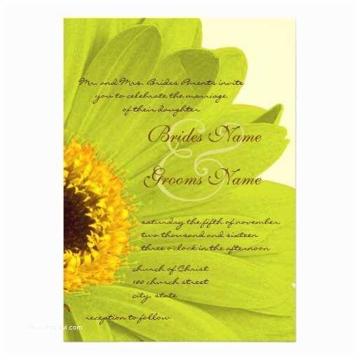 "Daisy Wedding Invitations Beautiful Elegant Gerber Daisy Wedding Invitation 5"" X"