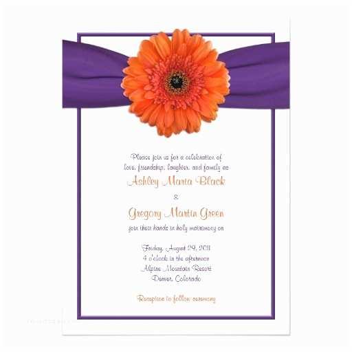 Daisy Wedding S Orange Gerbera Daisy Purple Wedding