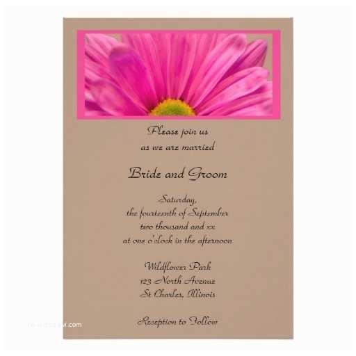 "Daisy Wedding S Pink Gerber Daisy Wedding  5"" X 7"""