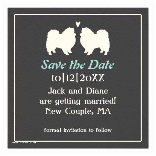 Dog Wedding Invitations 83 Best Images About American Eskimo Dog On Pinterest