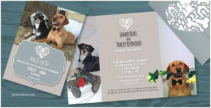 Dog Wedding Invitations Dogs Pet Wedding Invitation