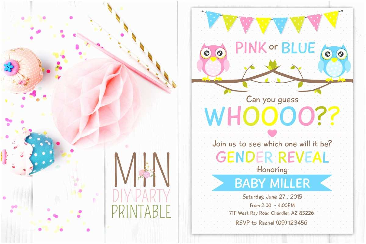 Gender Reveal Party Invitation Template Twin Gender Reveal Party Invitations