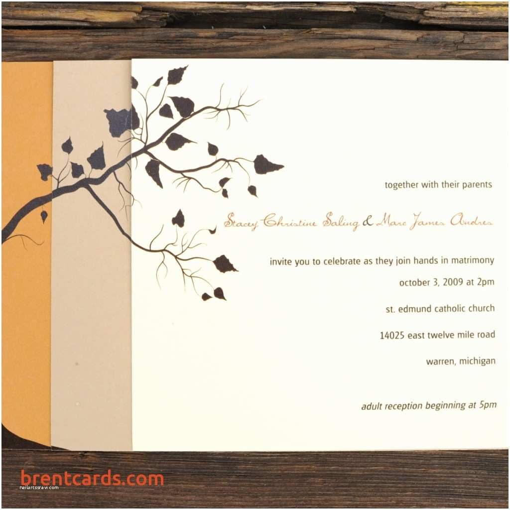 Indian Wedding Invitation Card Maker software Free Download Sample Indian Wedding Cards Free Line Invitation Card