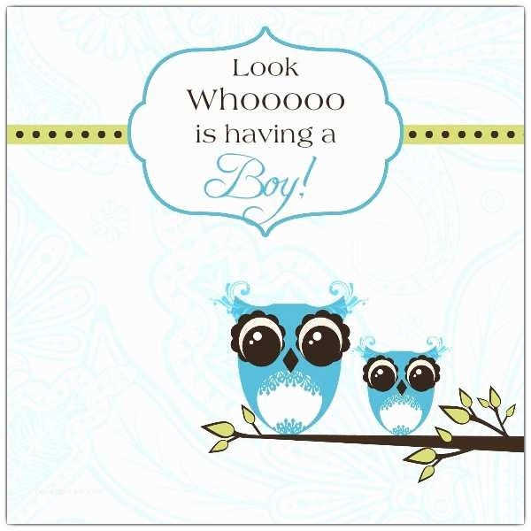 Owl Baby Shower Invitations Funky Owl Boy Baby Shower Invitations
