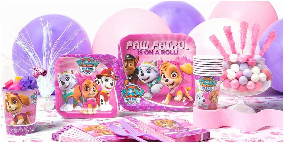 Paw Patrol Invitations Party City Pink Paw Patrol Party Supplies Paw Patrol Party Party City