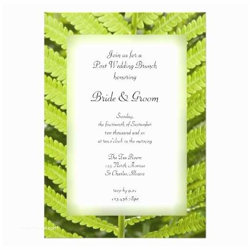 "Post Wedding Brunch Invitations Green Fern Post Wedding Brunch Invitation 5"" X 7"
