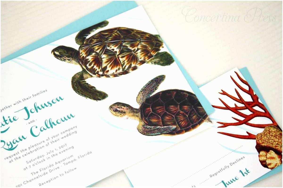 Turtle Wedding  Concertina Press — Sea Turtle Beach Wedding