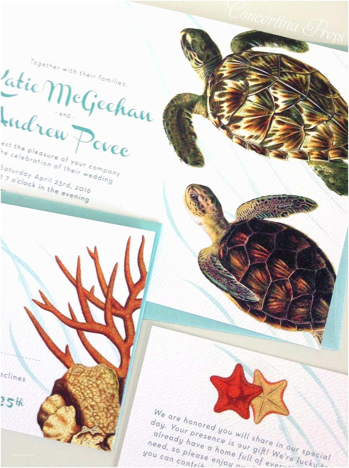 Turtle Wedding Invitations Concertina Press Stationery and Invitations Aquarium
