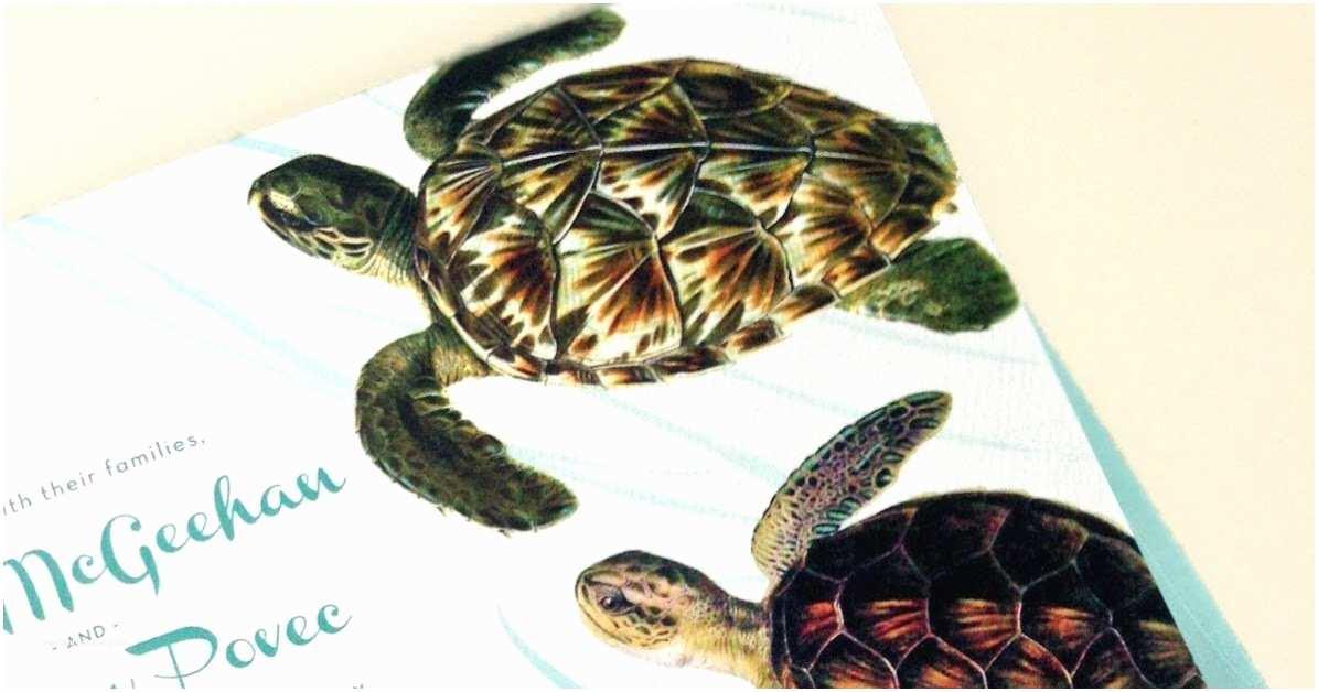 Turtle Wedding Invitations Concertina Press Stationery and Invitations Sea Turtle