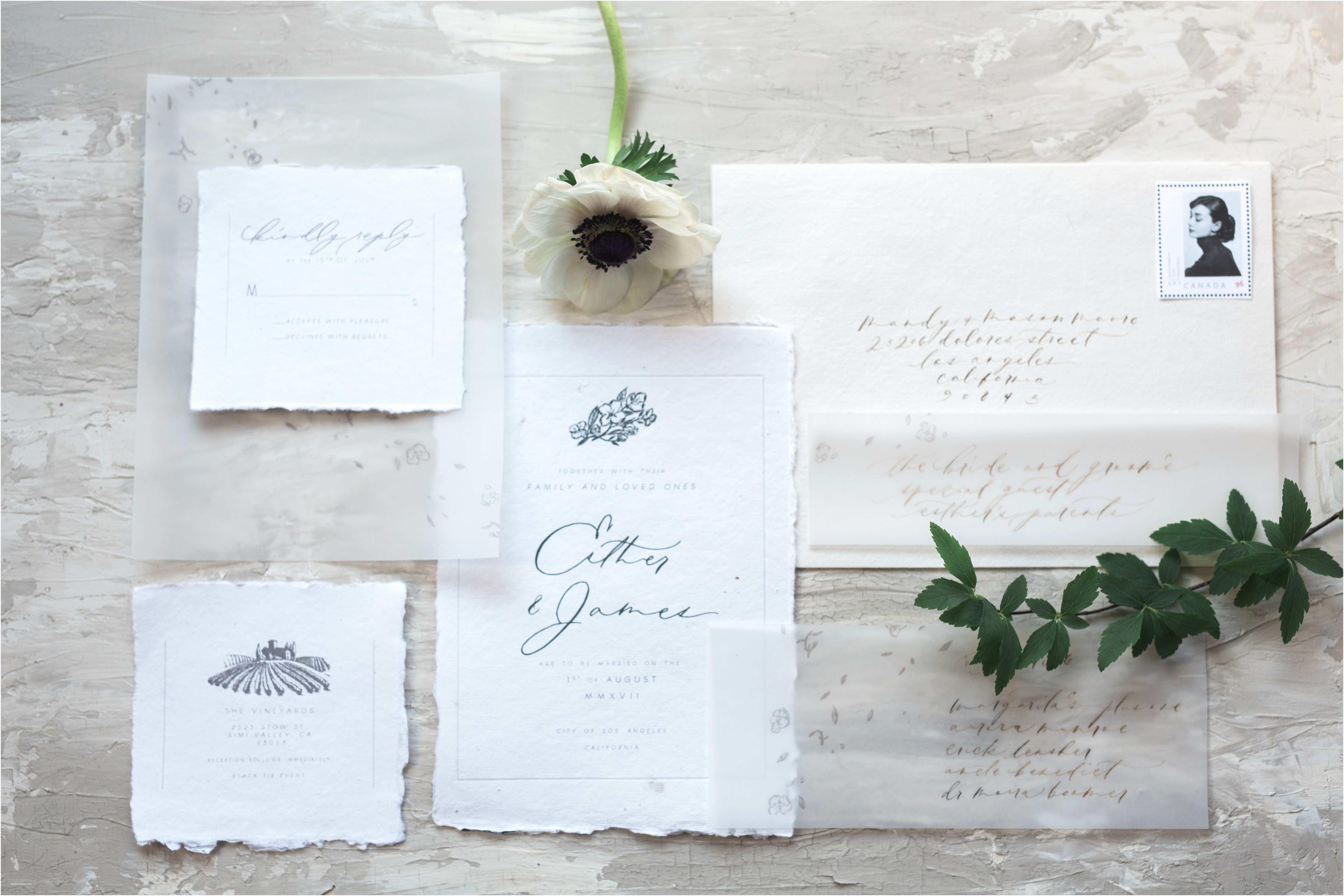 Vellum Wedding Invitations Elegant Pics Translucent Vellum Business Cards