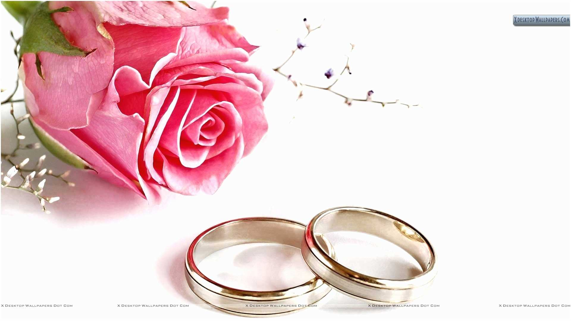Wedding Invitation Pictures Background Image Wedding Invitation Background And Inspired