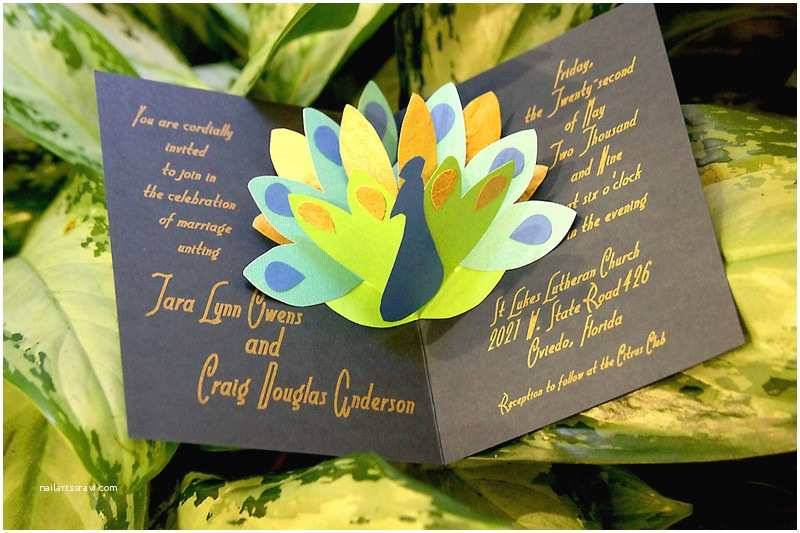 Wedding Invitations orlando Fl Tarable Designs Invitations orlando Fl Weddingwire